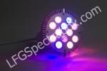 LFG Spectra DS02