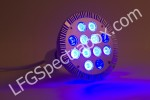 LFG Spectra DS05